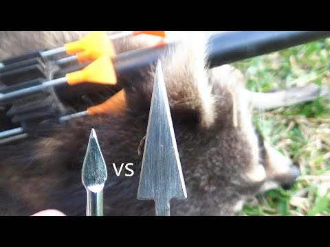 Cold Steel B625BB Bamboo Darts for Big Bore