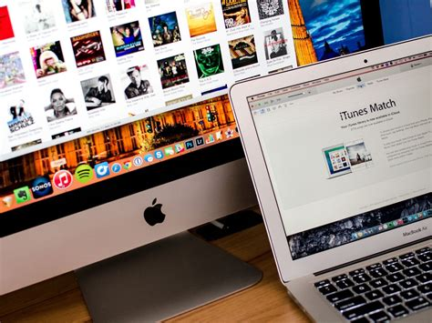 [Works Quickly] How to Fix iTunes Error 206 on Your iOS Device