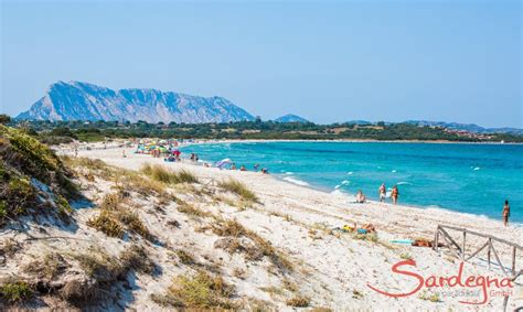 San Teodoro - dream beaches and lively nightlife in
