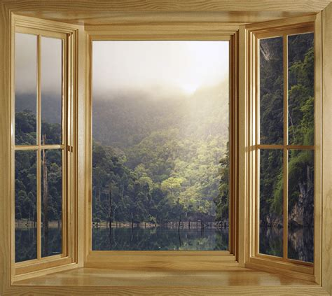 window view roller blinds | Photo printed roller blinds