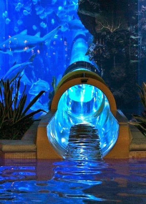 The Best Water Slides in Vegas -Las Vegas is known for its